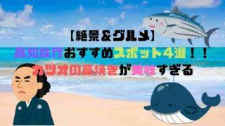 【絶景&グルメ】 高知旅行おすすめスポット4選!! カツオの藁焼きが美味すぎる